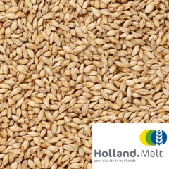 Holland Malt Munich mout 25 KG