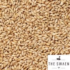 Swaen Dutch Pale Ale 25 kg EBC 6-9