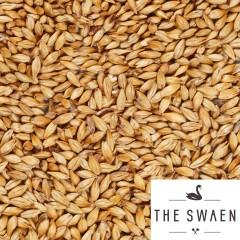 GoldSwaen Amber 1 kg EBC 60-80