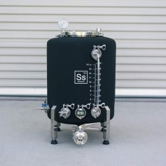 Ss Brewtech Brite Tank Brewmaster Edition 75 l (20 gal)